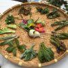 サンデープランニングの山菜尽くしディナーは豪華&満腹で大満足!!