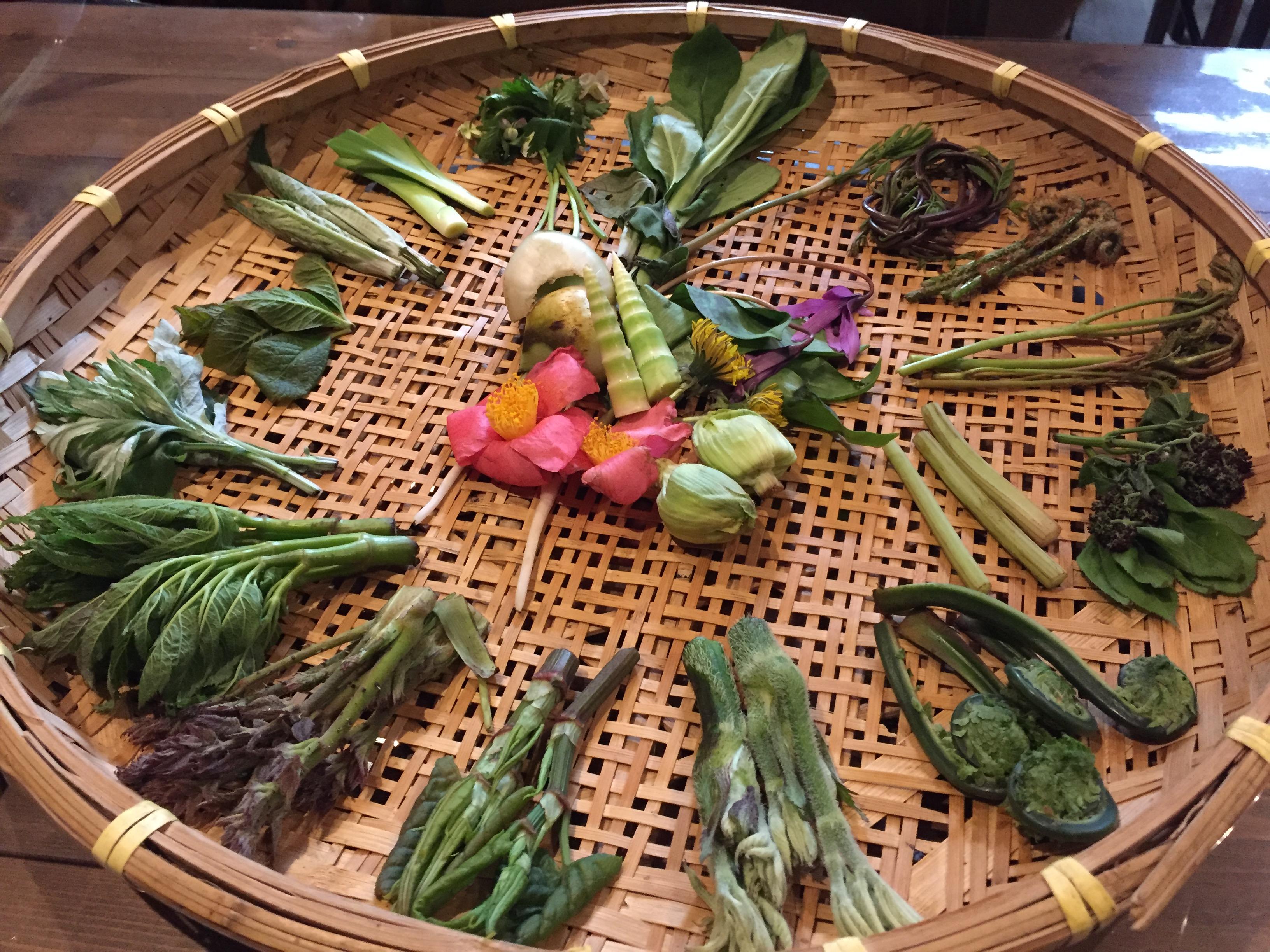 採れたての山菜